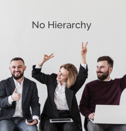no hierarchy