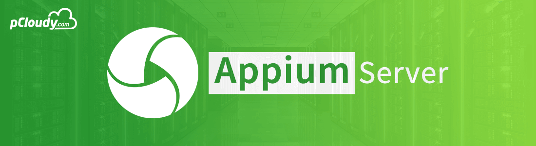 Starting Appium Server and launching the app from code